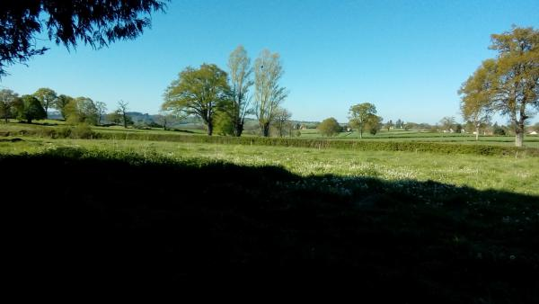 Farm for sale in central France with several dependencies, large plot of land and many possibilities