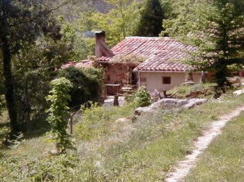 Home in splendid isolation on 20 ha with streams and lake