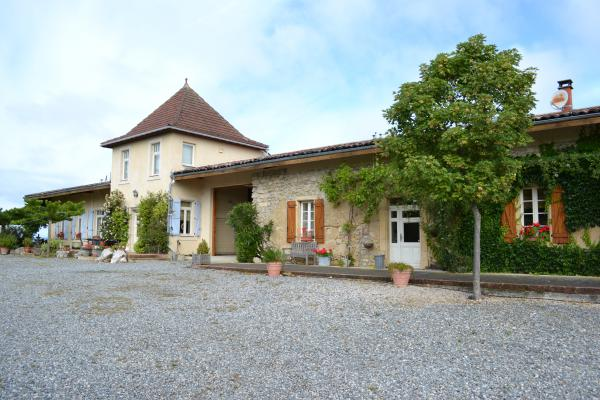 Urgent! Mansion near Toulouse with gite and pool and 55 ha!