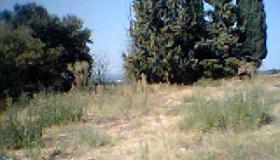 Constructible land of 770m2, lovely location to give your future home more value