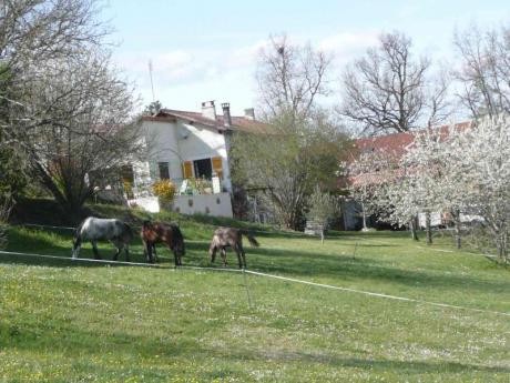 fr houses show  maison avec gites sur hectares etang de peche bien garni