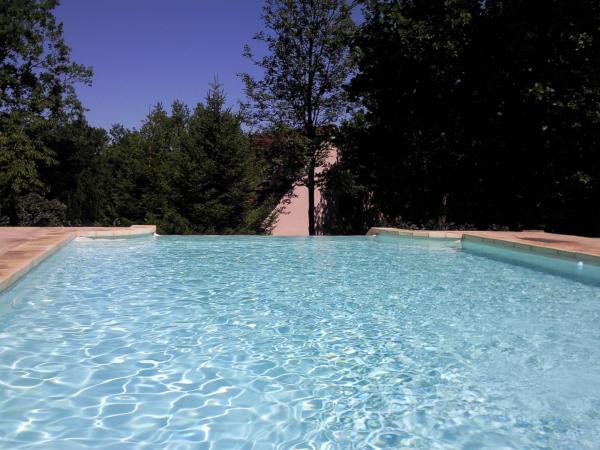 vendre jolie maison sur 2 niveaux avec piscine d bordement. Black Bedroom Furniture Sets. Home Design Ideas