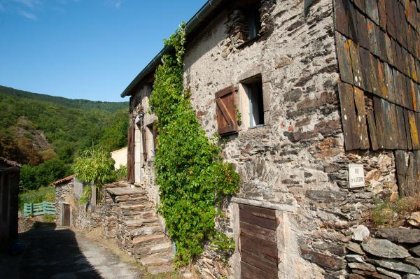 À vendre -Maison ancienne en pierre, terrasse, jardin