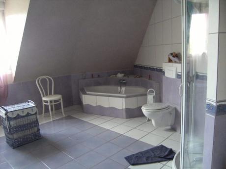 Vendre maison avec piscine int rieure et grand terrain for Piscine sarralbe
