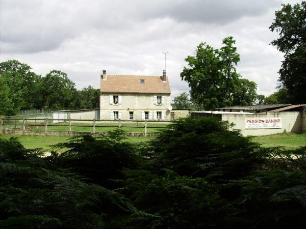 Vendre maison foresti re sans voisins avec 5 ha de terrain - Prix maison sans terrain ...