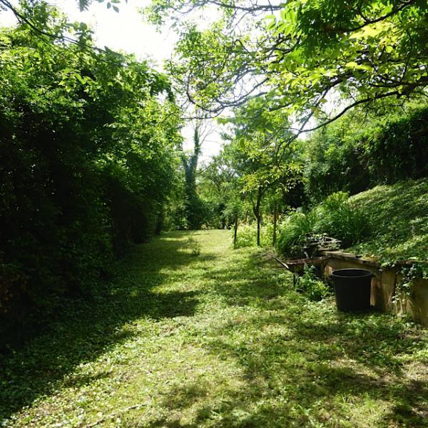 Te koop te koop woning in de bourgogne uit 1930 met tuin for Huis te koop borgerhout met tuin