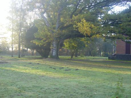 Te koop historisch landhuis met gastenhuis 6 slaapkamers for Te koop oude boerderij