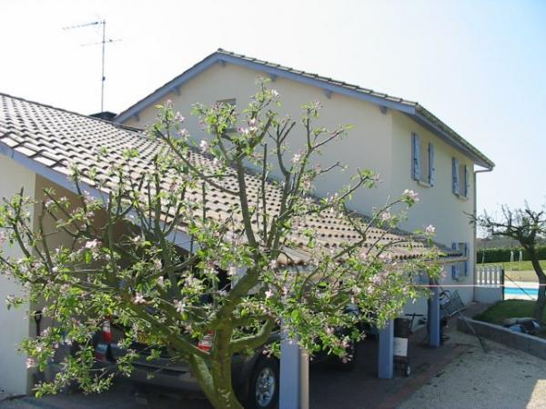 Te koop vrijstaand huis met groot zwembad net buiten een klein dorpje - Zwembad huis ...